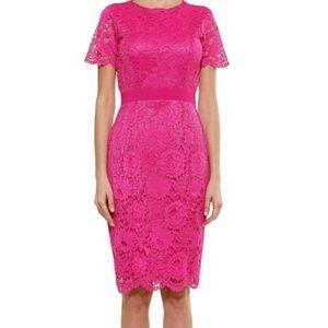 Alexia Admor Delora Lace Dress Pink SZ 10 NWT